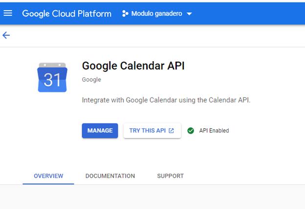 google_calendar_api_configura_calendar_api